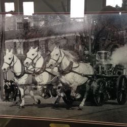 Steam powered fire pump pulled by horses